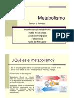 Clase 8 Metabolismo, Termodinámica y Cinética enzimática