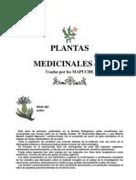 La Ciencia Mapuche 5