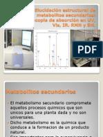 Elucidación estructural de metabolitos secundarios.pptx