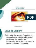 Concepto ERP SAP