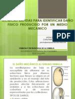 TECNICAS RAPIDAS PARA IDENTIFICACION DE DAÑO  FISICO  PRODUCIDO