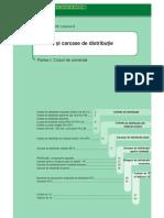cofrete_carcase_distributie_2005-2006