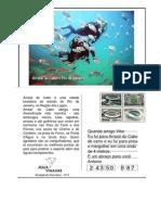 4A-CARTÃO-POSTAL