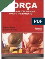 steven fleck- princípios metodológicos para o treinamento de força