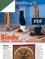 Bindu No. 6
