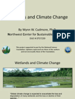 Wetlands and Climate Change