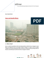 Haze and health Effects (issue 01).pdf