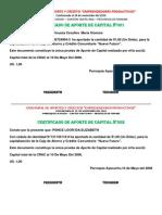 1.3.2.3. Certificado de Aportes de Capital