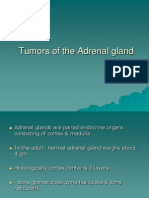 Tumours of the Adrenal Gland