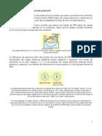 01. CONCEPTOS BÁSICOS DE ELECTRICIDAD I