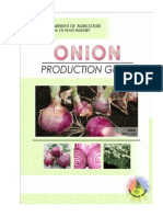 Productionguide Onion