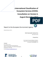 CICES-V43 Revised-Final Report 29012013