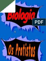 A p Point Protistas Protozorios2007 Grav 091020085532 Phpapp01