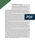 A importância da psicologia organizacional e do trabalho II