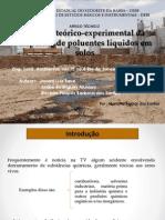 Análise teórico-experimental da dispersão de poluentes líquidos em