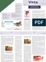 94-Pancreatite_felina-_aspectos_diferenciais__