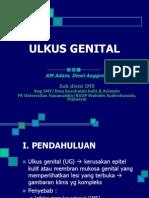 Diagnosis Ulkus Genital
