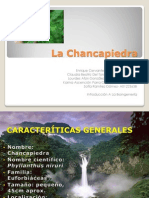 La Chancapiedra Final