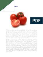 La Historia Del Tomate