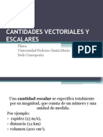 Cantidades Vectoriales y Escalares