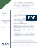 capital social y economìa solidaria2004