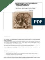 5to Biologico Bachillerato Comunicacion Visual