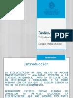 Biolixiviacion.pptx