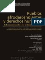 9 Pueblos Afrodescendientes y Ddhh