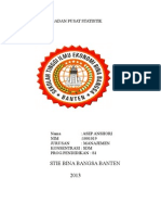 laporan pkn 2013
