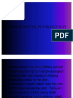 79740748 Lower Motor Neuron LMN