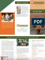 Layers Brochure