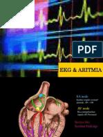 ECG&Aritmia Tutor Ref