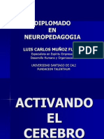 Exposicion neuropedagogia