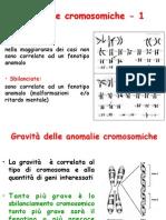 Anomalie Cromosomiche Di Numero