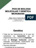 Genes y expresión genica