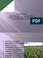 Presentación1CALABACITA
