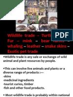 Wildlife trade
