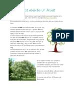 Cuánto CO2 Absorbe Un Árbol.docx