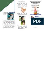 TRIPTICO GRIPE PORCINA.AH1N1 HECTOR FERNANDEZ.pdf