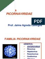 Diapositivas Tema 32. Picornavirus. Gastroenteritis Virales