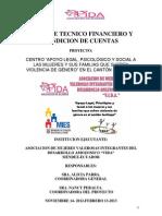 Informe Proyecto Vif Mies