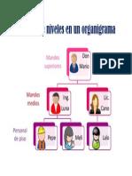 Ejemplo de niveles en un organigrama.pdf