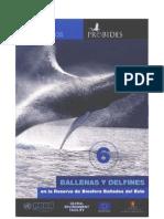 Ballenas y Delfines - Ficha Didactica de Probides
