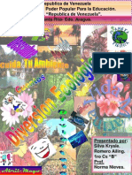 Diversion Ecologica Pag3