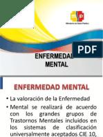 Evaluacion Pcd Enfermedad Mental