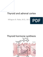 Thyroid and Adrenal Cortex Handout