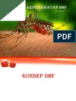 PPT DHF PRESENTASI.pptx