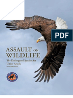 Assault on Wildlife