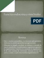 Functia endocrina a rinichiului