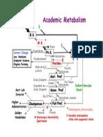 Academic.metabolism